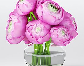 Bouquet of pink ranunculuses 3D model