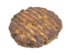 Photorealistic Beef Burger Patty 3D Scan