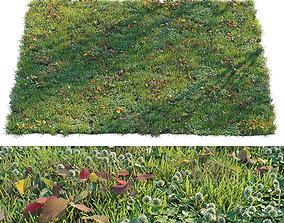 Grass set 2 clover 3D model