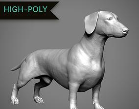 3D printable model Dachshund High-Poly