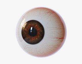 3D model science anatomy Eyeball