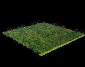 animated 3D Grass Blender Model Animated