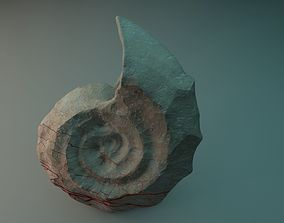 ancient petrified shell 3D