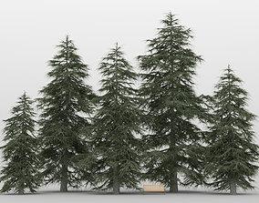 Cedar Tree Pack 01 3D