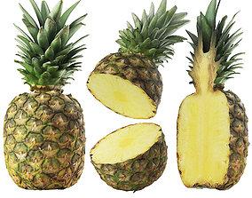 optimization Pineapple 3D