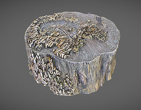 Stump with mushrooms 3D model