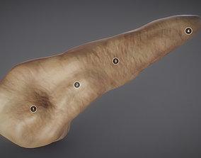 3D model Pancreas