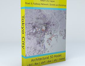3D Tokyo City Railway System Road Network Streets and