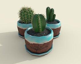 Cacti set 3D model