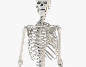 Human Skeleton Model 3d realtime