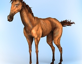3D asset Fantasy Horse