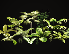 3D asset Tropical vegetation pack