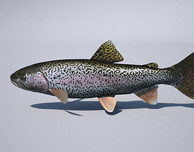 salmon rigged trout 3ds max vray