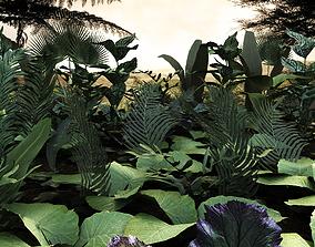 3D model Set tropical plants2 10 types