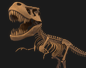 cretaceous T-rex Skeleton 3D