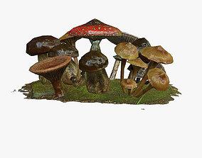 Mushrooms 3D asset