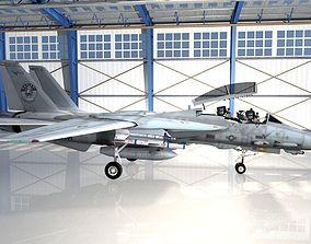Grumman F-14 Tomcat 3D model