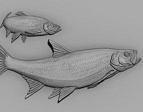 3D print model fish relief