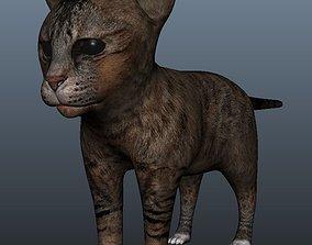 Kitten Model low-poly