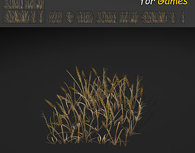 3D model Dry Plains Grass
