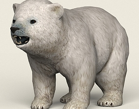 Game Ready Polar Bear Cub 3D model realtime