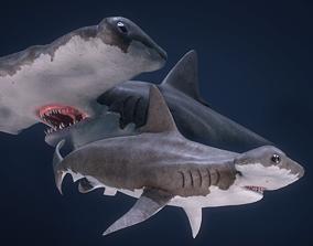 3D asset Hammerhead Shark - Game Ready