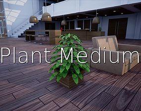 3D asset Plant M SHC Quick Office LM