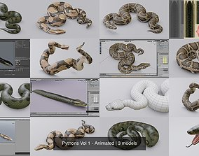 Pythons Vol 1 - Animated 3D