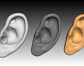 VR / AR ready ear Ear 3D Model