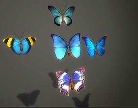 3D model Butterflies Animated