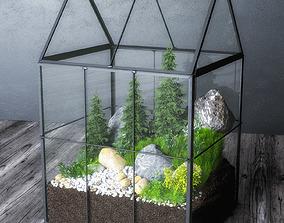 3D model Greenhouse Moss Terrarium
