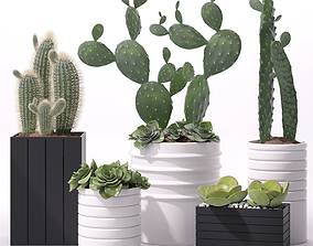 3D model Contemporary plant set 3