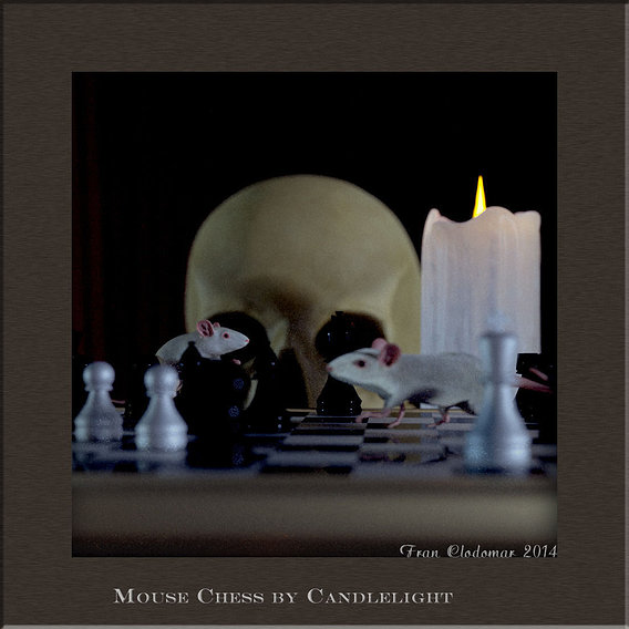 Chess and Cheese by Candlelight