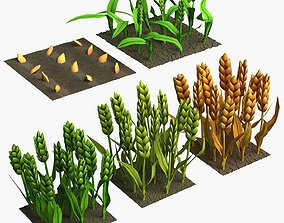 3D asset Barley Cartoon Stages of Grow