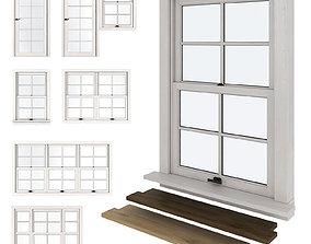 3D model American type plastic Windows