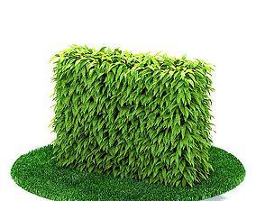 3D Green Hedge