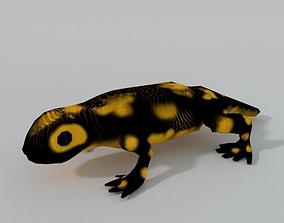 Salamander 3D asset