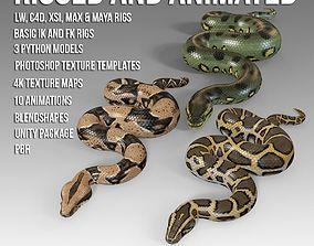 3D model Animated Pythons PBR Vol 1