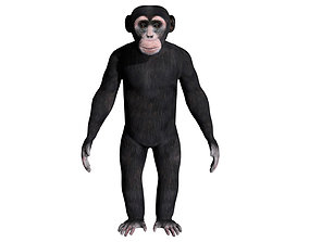 Chimpanzee 3D model rigged low-poly