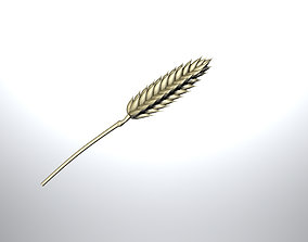 Wheat head with straw 3D model