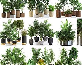 3D model Plants collection vol 07