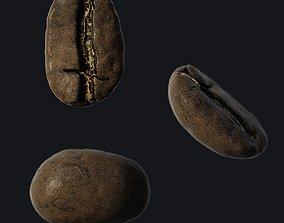 3D asset Coffee Seed