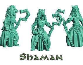 Shaman druid 3D print model
