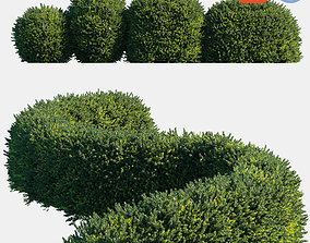 3D Auto hedge collections 1