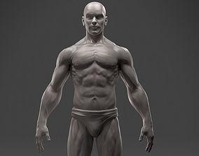 3D print model Male Anatomy Sculpture
