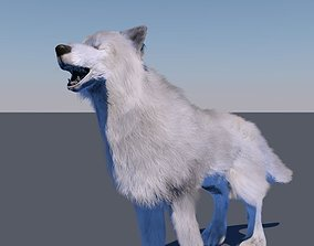 White wolf FUR RIGGED 3D model
