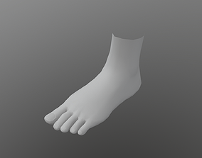 Low Poly feet model VR / AR ready anatomy