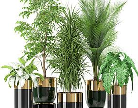 3D model Plants collection 424