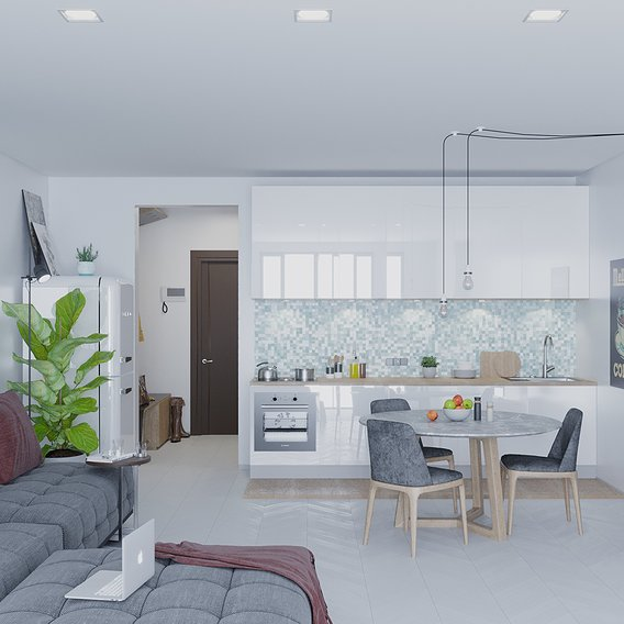 Cozy kitchen-living room