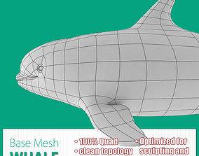 3D asset Whale Base Mesh